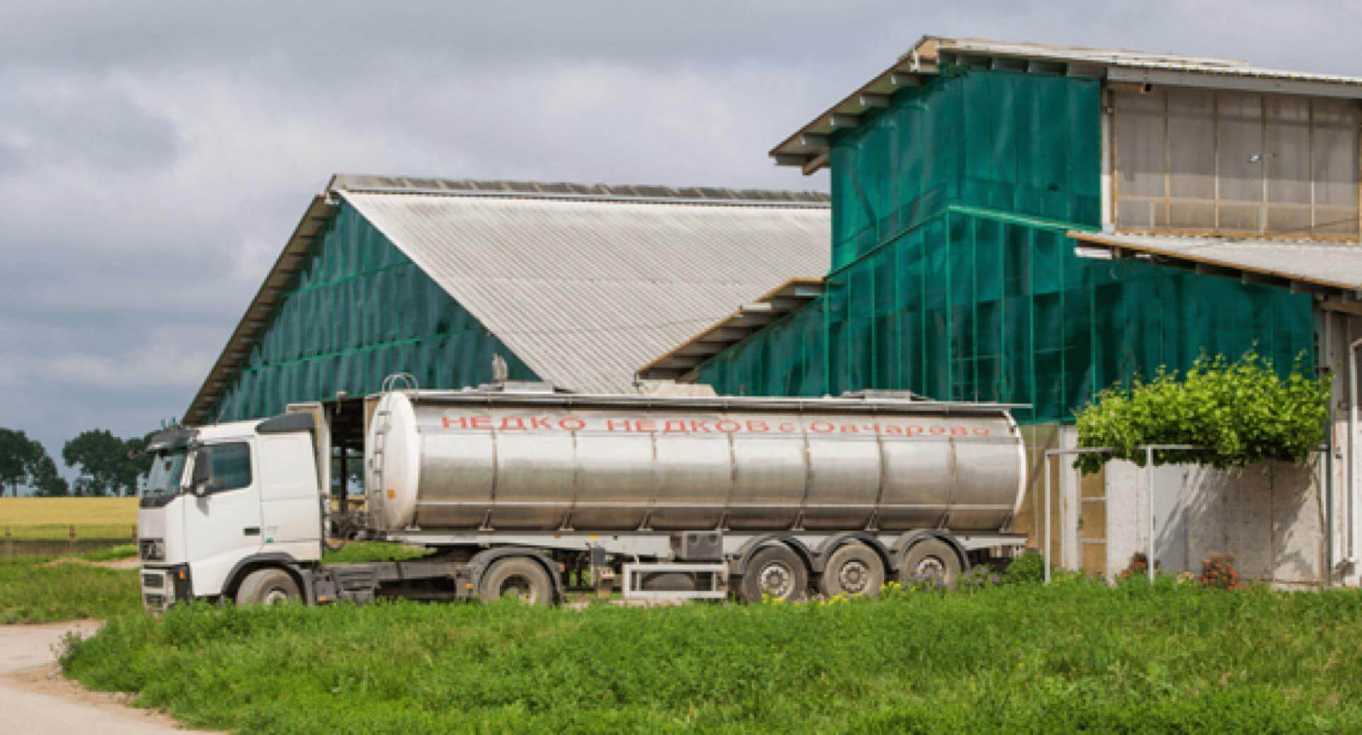 Висококачествено сурово мляко